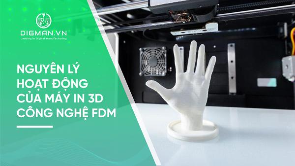 Nguyên lý hoạt động của máy in 3D FDM